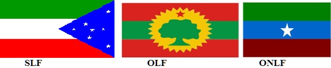 Ogaden National Liberation Front, OROMO Liberation Front and Sidama Liberation Front Alliance for Peace, Democracy and the right of Choice